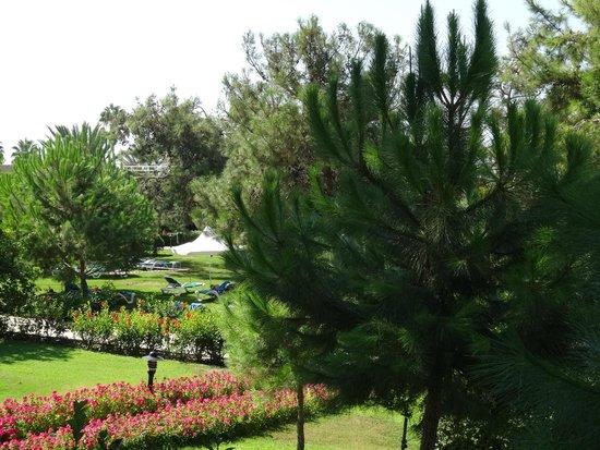 Turquoise Resort Hotel & Spa: местность