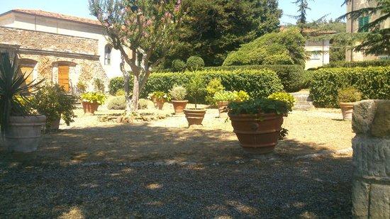 Villa di Papiano: Yard