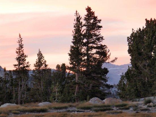 Yosemite High Sierra Camps : Vogelsang Sunset