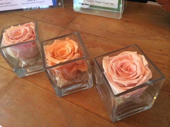Tango Luxe Beach Villa: roses éternelles from Paris