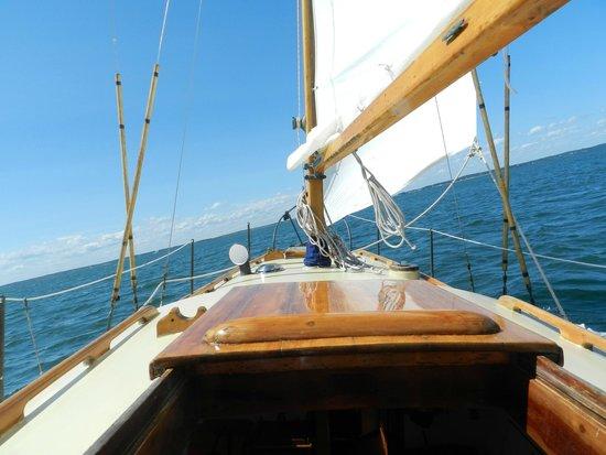 Sail Ena - Vineyard Sound Sail Charters : Ena