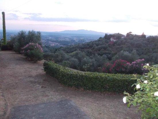 Villa di Papiano: Path leading to the pool