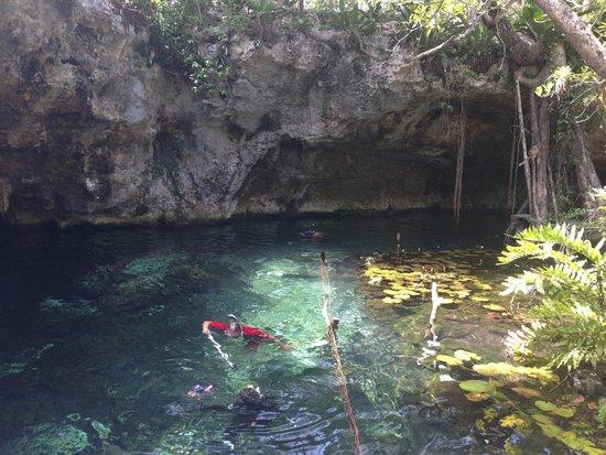 Cenote Chaak Tun: grand cenote