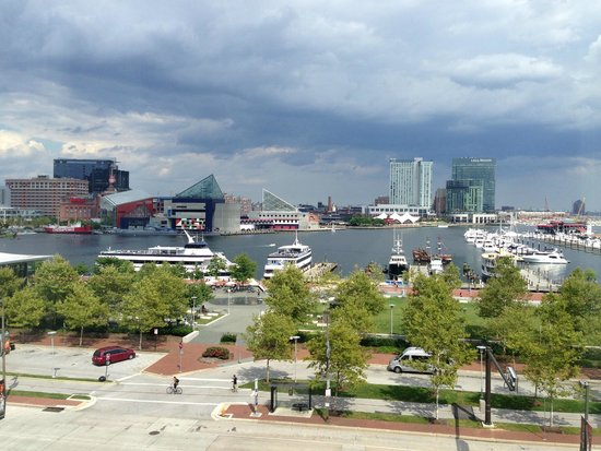 Royal Sonesta Harbor Court Baltimore : Great view
