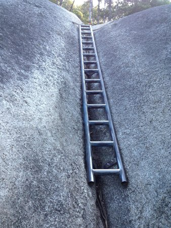 Stawamus Chief Park: A steel ladder to get through a steep section