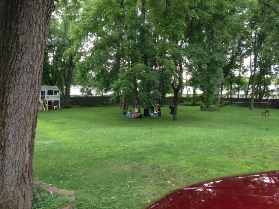 Black Walnut Inn: Grass yard view.