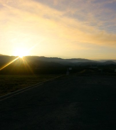 Larkmead Country Inn: The sunrise, just outside