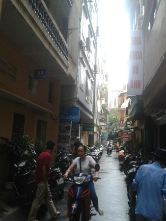 Hotel Bluebell: the street of the hotel