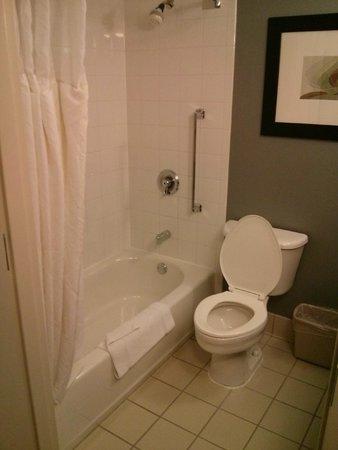 Hilton Garden Inn Austin Northwest / Arboretum: Shower and toilet seat