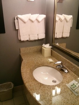 Hilton Garden Inn Austin Northwest / Arboretum: Basin - Clean!