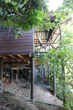 Mai Pen Rai Bungalows : vue de l'extérieur, bungalow 11