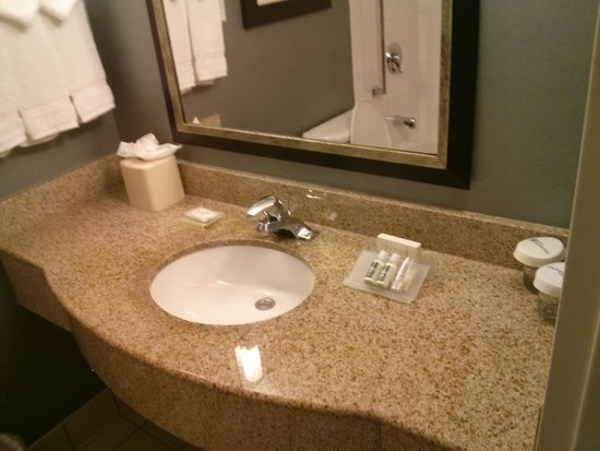 Hilton Garden Inn Austin Northwest / Arboretum: Toilet Amenities