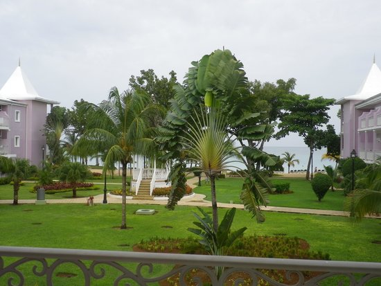 Hotel Riu Palace Tropical Bay : View of resort grounds