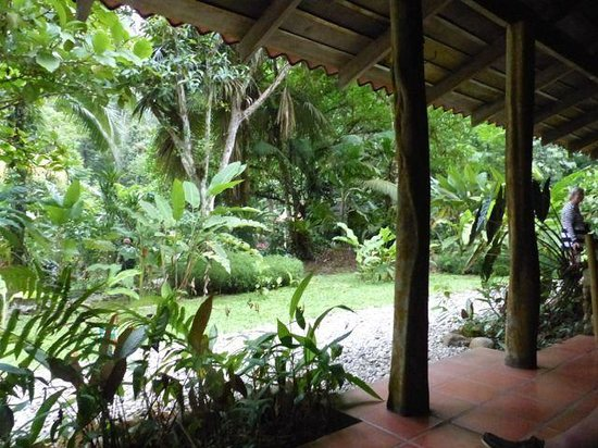 Esquinas Rainforest Lodge: view from verandah area of lodge - open to outside