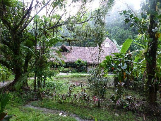 Esquinas Rainforest Lodge: the lodge viewed from our chalet