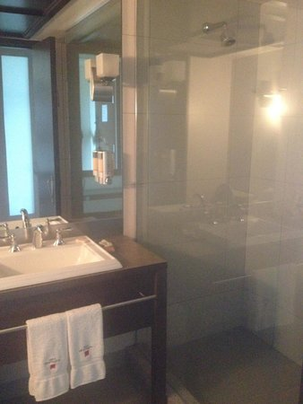 Hôtel Mortagne : Bathroom (huge shower)