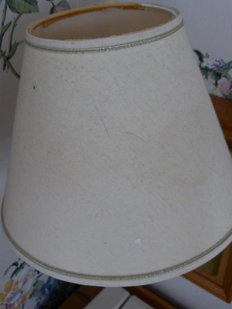 Waterford Lodge Hotel: dirty lampshades