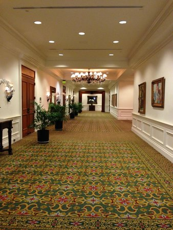 Delray Beach Marriott : Lovely corridor