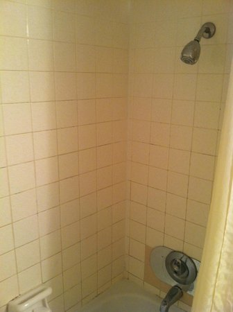 Beachbreak By The Sea: Shower with nozzle that is 5' high. Dirty tile, half finished repairs.
