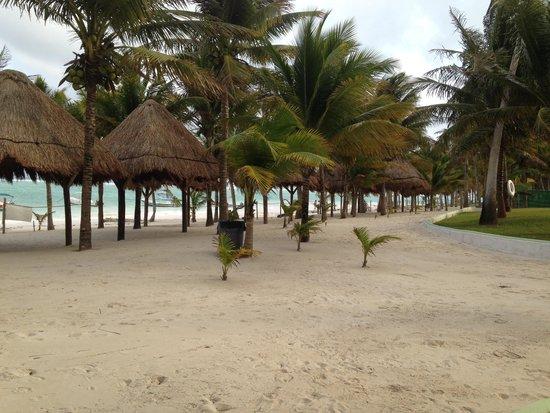 Hotel Akumal Caribe: Hotel grounds
