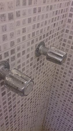 Towne Hotel: corrosion and dirt in the shower
