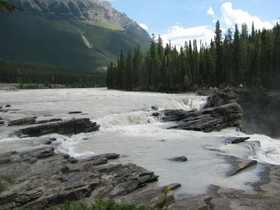 Athabasca Falls: The water is so calm before it goes over the edge.
