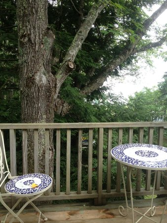 High Tide Inn: Ocean view - like being in a tree house!