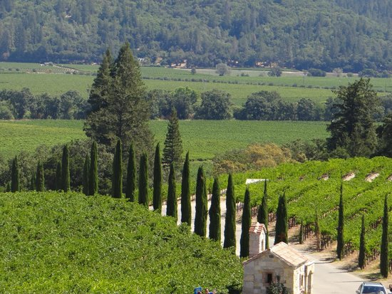 Castello di Amorosa: View from the 2nd floor terrace