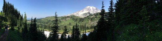 Mount Rainier : Every corner is a great new view!