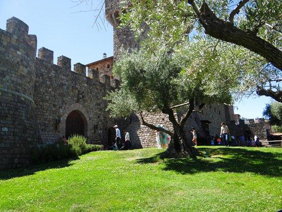 Castello di Amorosa: Outside
