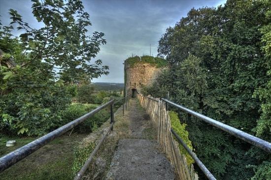Usk Castle: Astrology tower