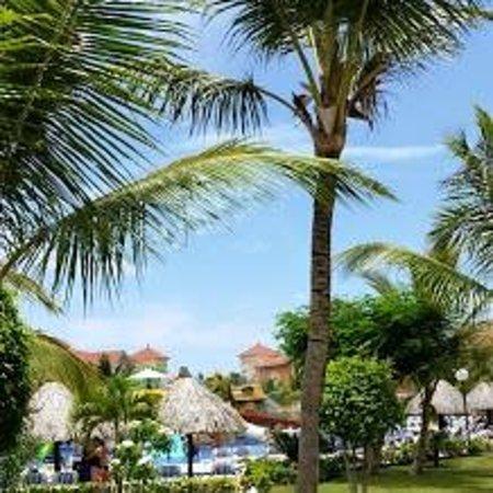 Grand Bahia Principe Turquesa: Piscine Club Premier