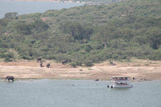 Mweya Safari Lodge: Kazinga Channel view from lodge