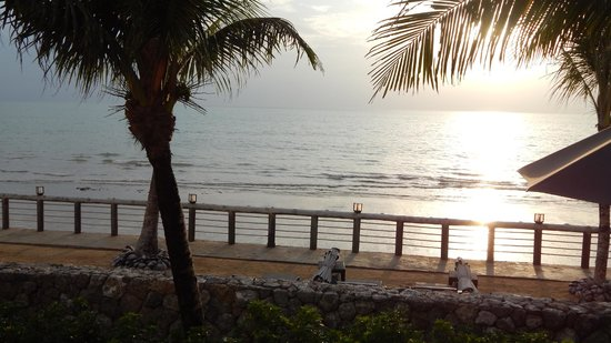 """Casa de La Flora: the view from our """"ocean front"""" room- this is the """"beach"""" :("""