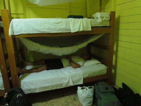 Tambopata Hostel: Our bunks