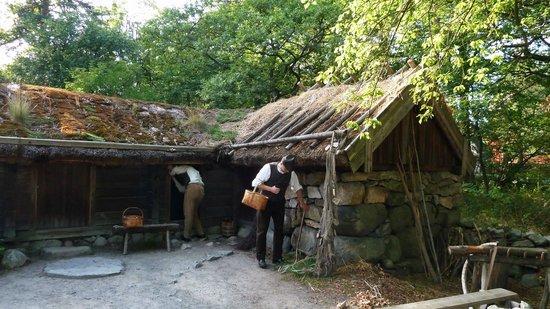 Skansen Open-Air Museum: Parco di Skansen