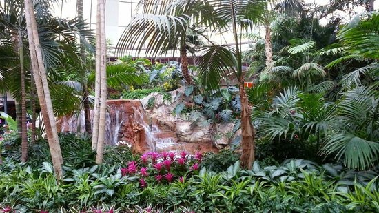 The Mirage Hotel & Casino: Beautiful area by the lobby