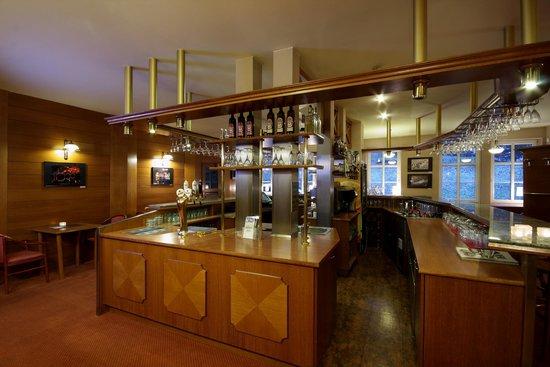 Hotel Snezka: Lobby Bar