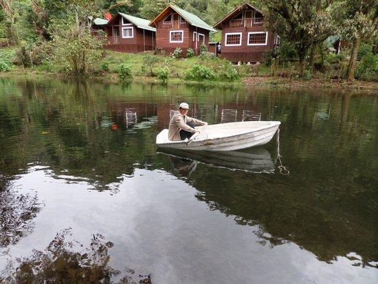 Sueños del Bosque: En el lago
