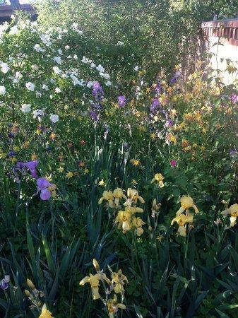 Los Poblanos Historic Inn & Organic Farm: Gardens