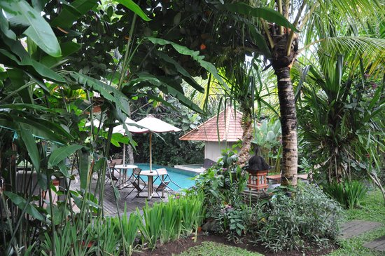 Matahari Cottage Bed and Breakfast: Lush Compound