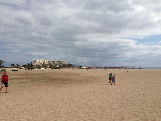 ClubHotel Riu Oliva Beach Resort: View from the beach