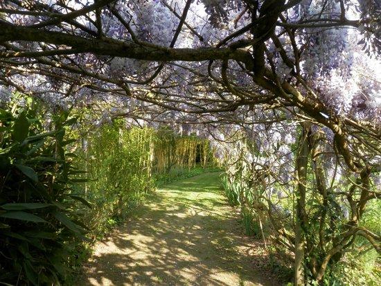 Le Jardin de Saint Avit
