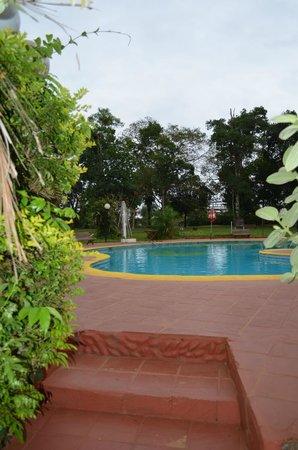 Hotel Tropical: Piscina y parque