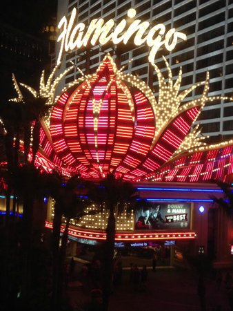 Flamingo Las Vegas Hotel & Casino: Main entrance at night