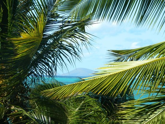 Blumarine Attitude : View of the beach