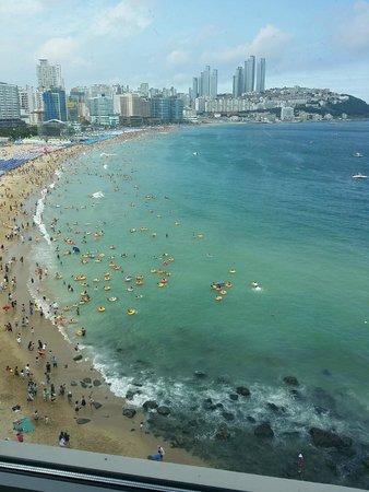 The Westin Chosun Busan : The beach