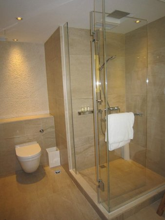 Gateway Hotel (Marco Polo Hotels): Bathroom With Rain Shower + Shower Head