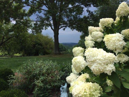 The Inn at Mount Vernon Farm: Gorgeous landscape