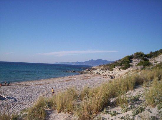 Plage de Saleccia : spiaggia
